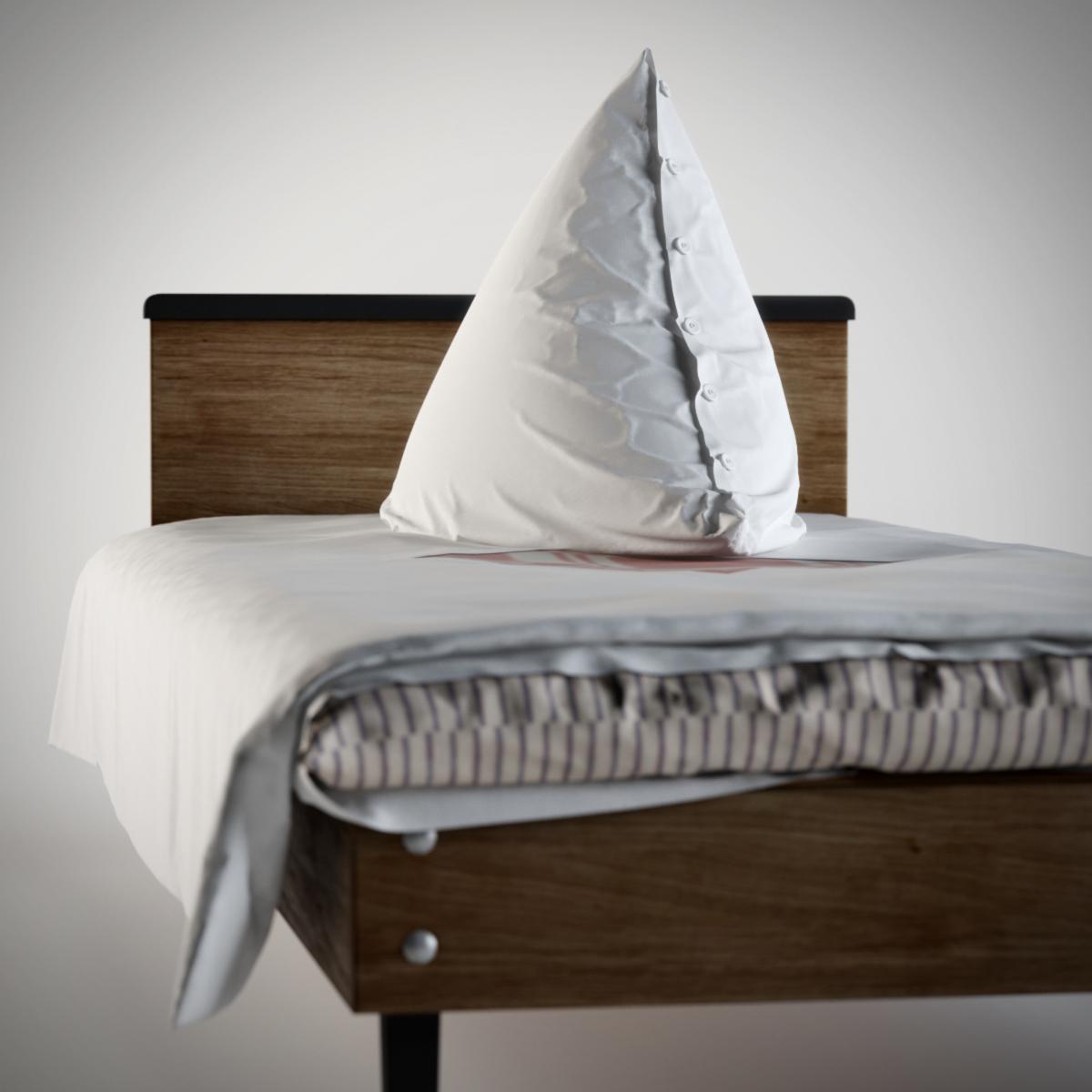 Pioner bed 01