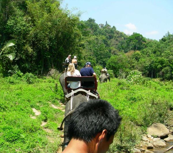 Едем на слонах. Тайланд.