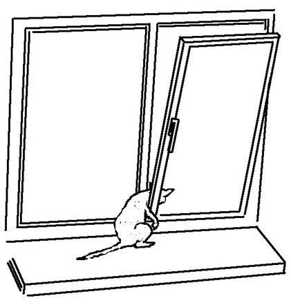 Открытое окно раскраска для детей