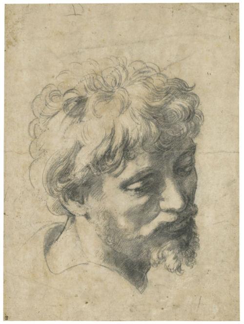 5-Рафаэль Санти - Голова молодого апостола Эскиз к картине Преображение.jpg