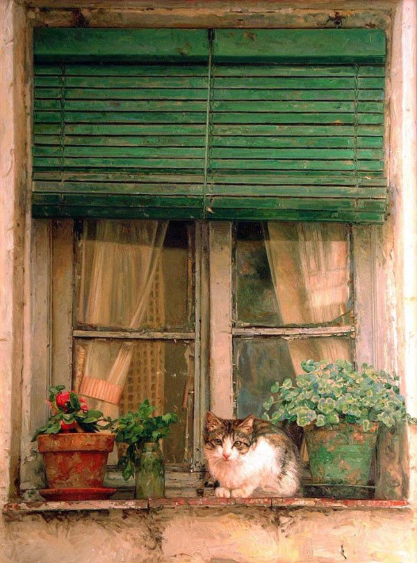 кошки 6.jpg