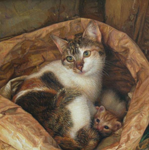 кошки 7.jpg