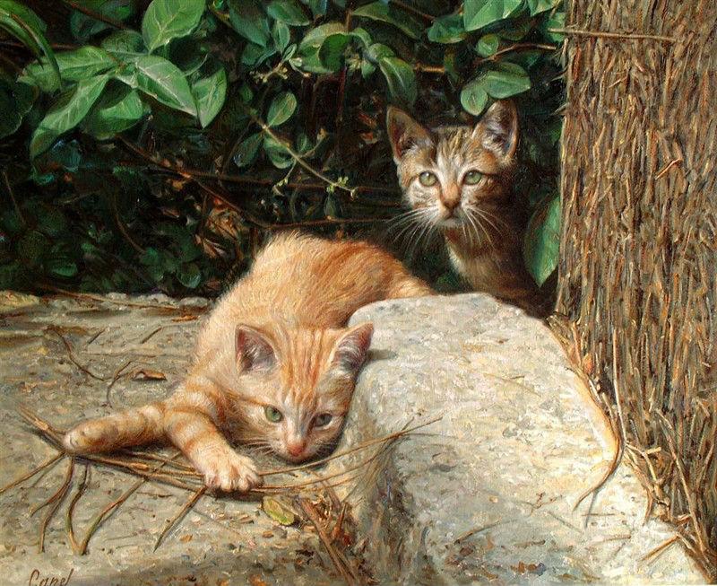 кошки 12.jpg