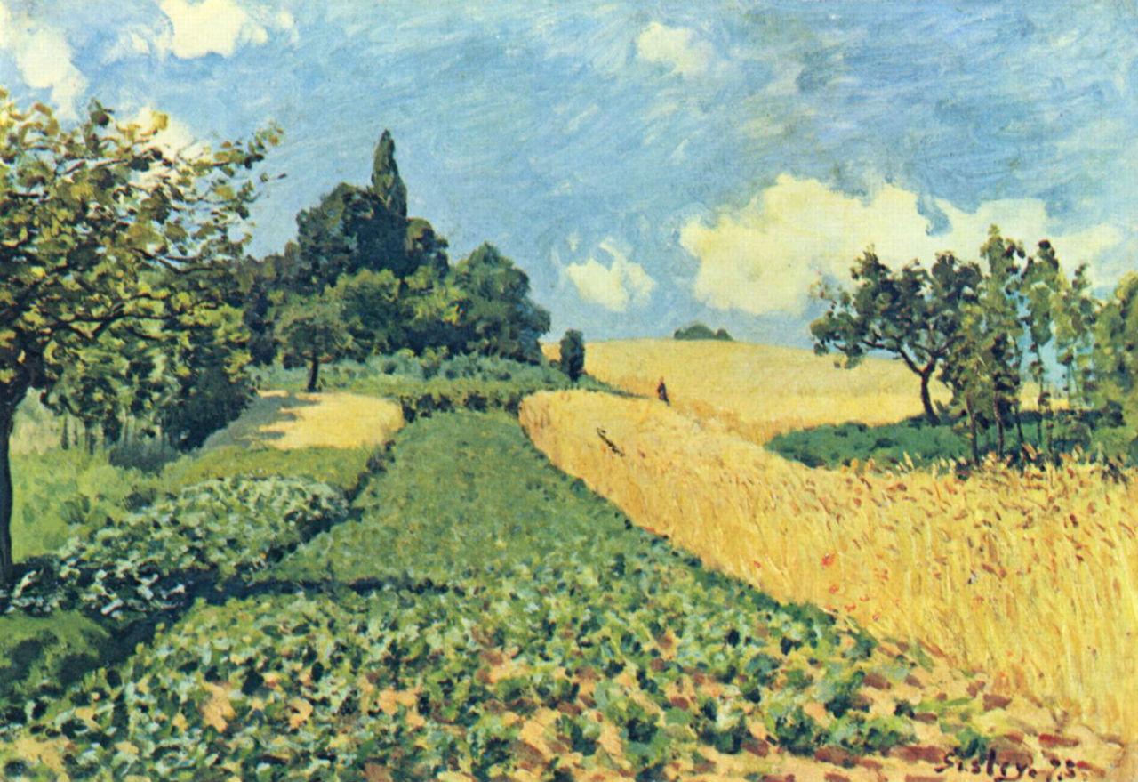 4-Пшеничные поля близ Аржантея.jpg
