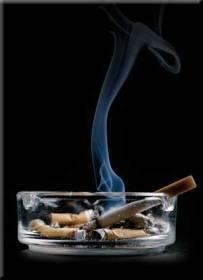 Сигарети популярних марок кишать небезпечними бактеріями