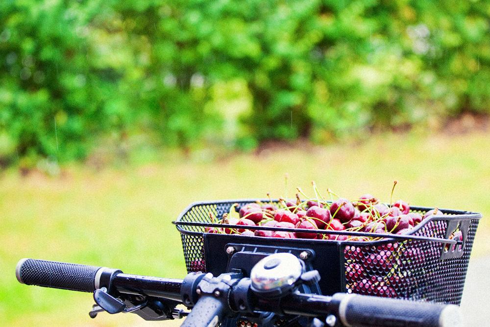 cherry-bike-2