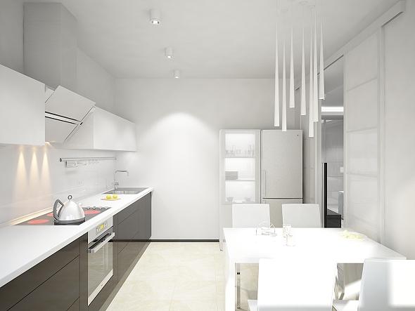 ss 1roomflat_kitchen_3