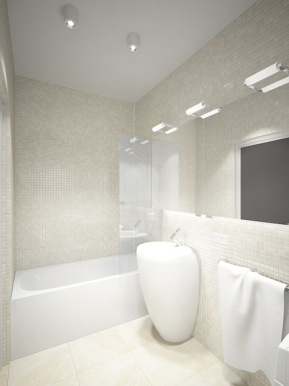 ss 1roomflat_WC_1