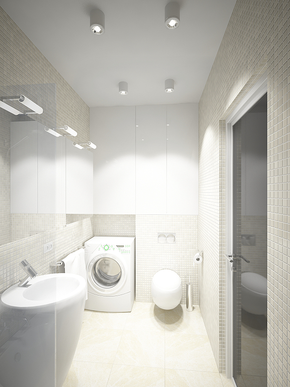 ss1roomflat_WC_2