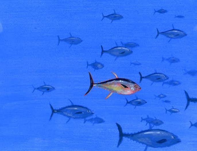 school tonijnen