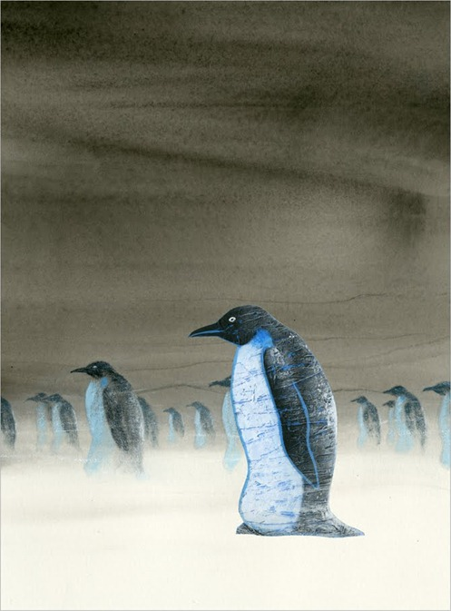 pinguins in duisternis