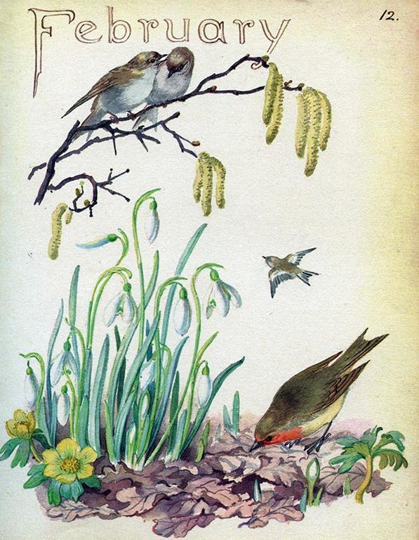 www.booksite.ru • Просмотр темы - Заметки о природе: дневник ...