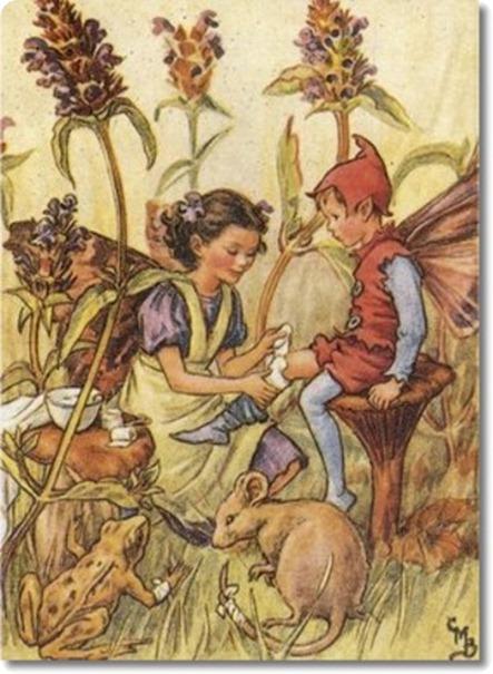 cicely-mary-barker-flower-fairies-of-the-wayside-the-self-heal-fairy