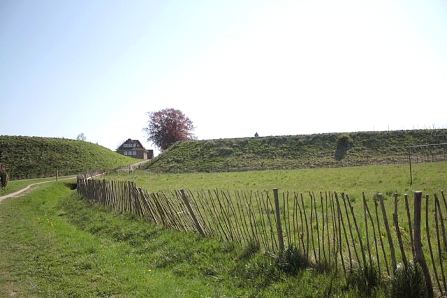 44 Вид на ворота oldenburg.