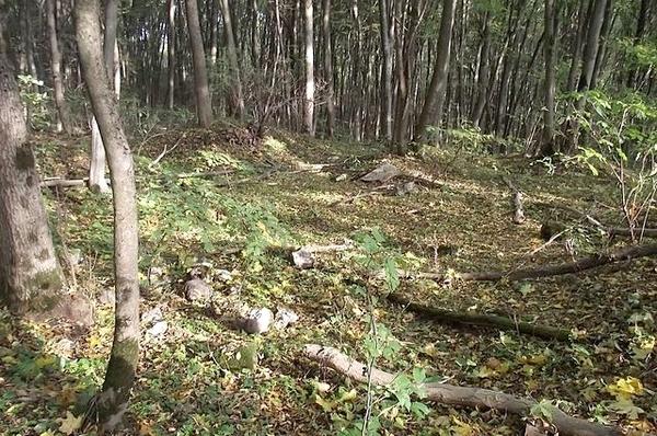 рис 29 Место одного из капищ городища Звенигород---
