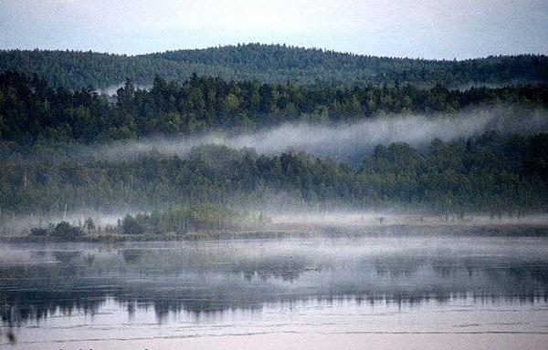 погода алапаевск клев