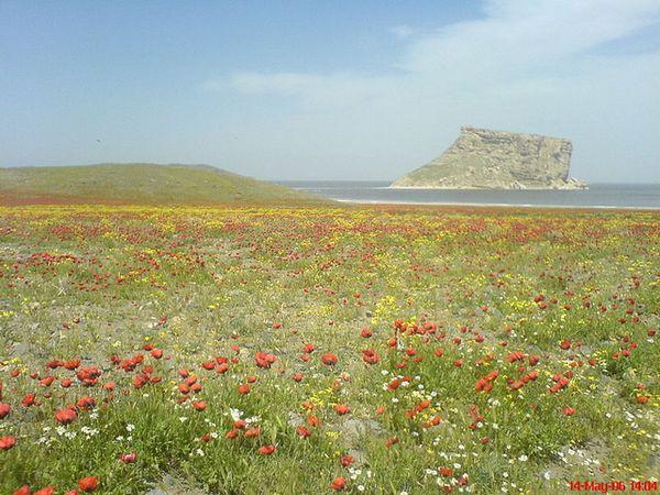 1 Остров Казем Даши. оз. Урмия
