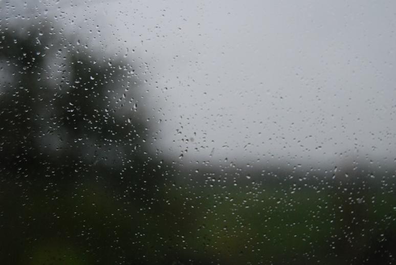 2014-11-08 Rain