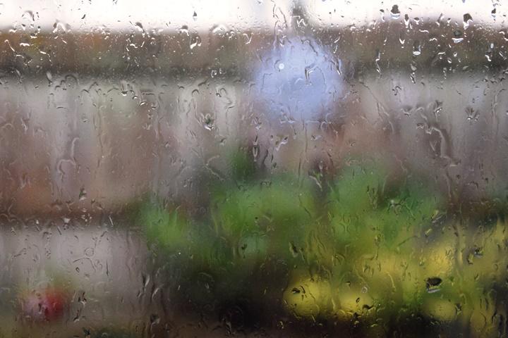 2016-12-12 Rain