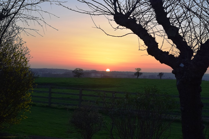 DSC_3820 2017-03-15 Sunset