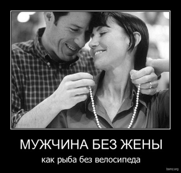3796451_original