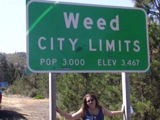 Me under the weed sign...taken by Bill