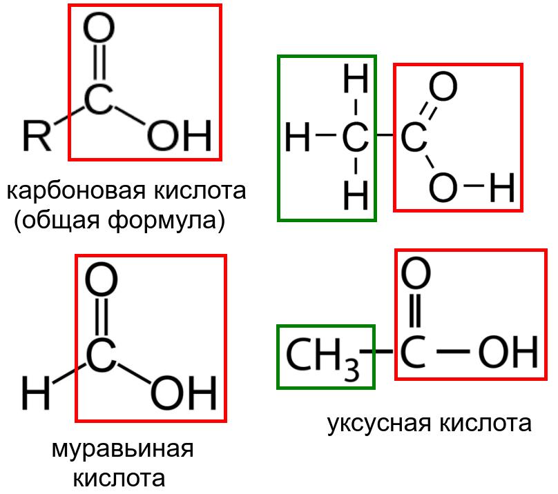 карбоновые_кислоты.png