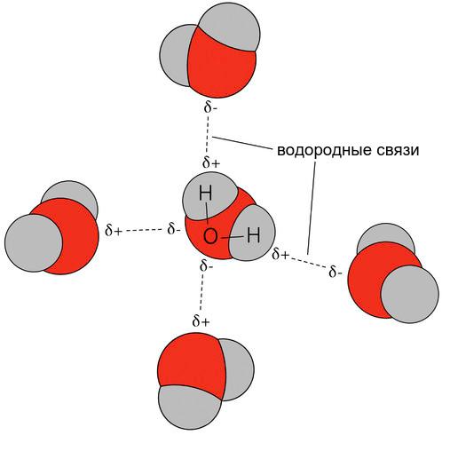 водородные связи.png