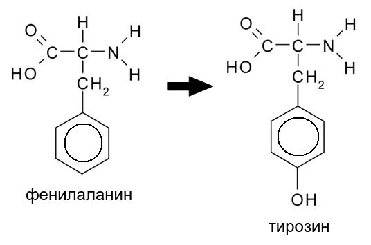 ароматика.png