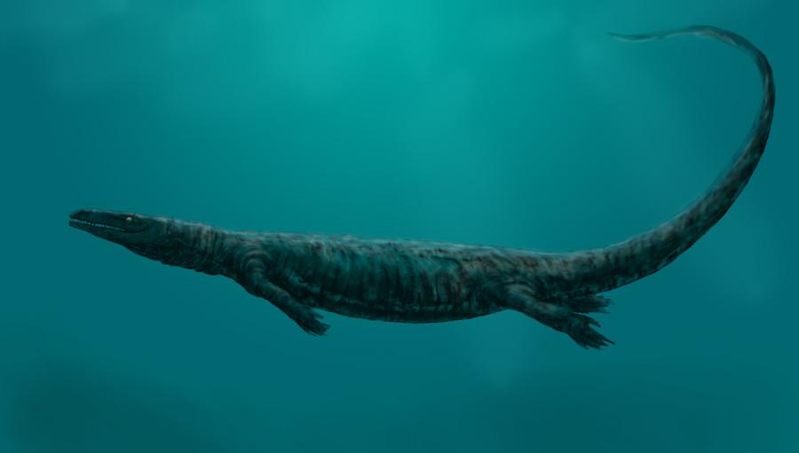 Aigialosaurus_bucchichi