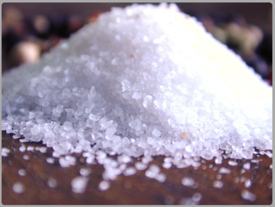 salt-04