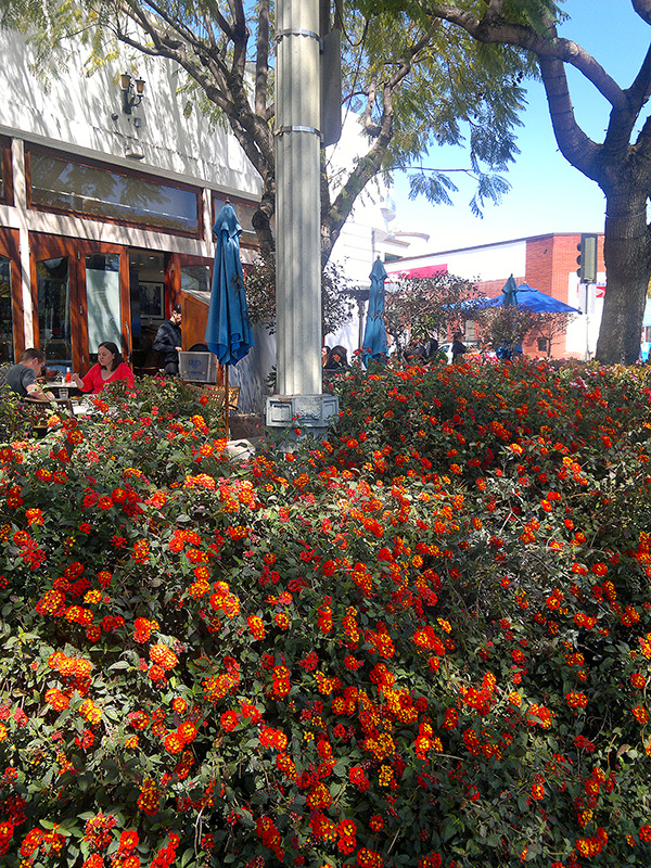 Culver_city_2_resize