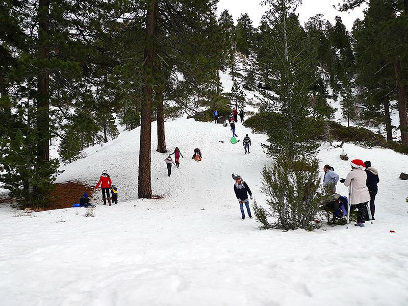 Рождество в Калифорнии: снег, пальмы и тихоокеанский бриз 27