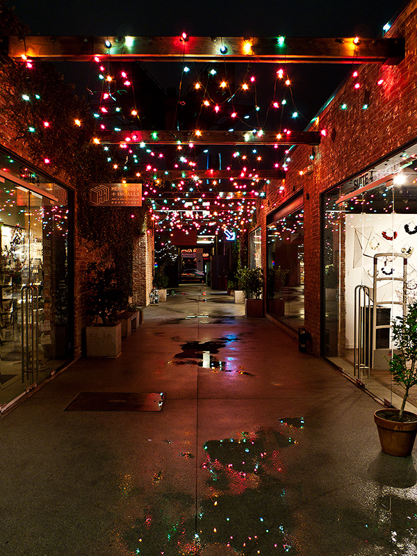Рождество в Калифорнии: снег, пальмы и тихоокеанский бриз 078-(2)