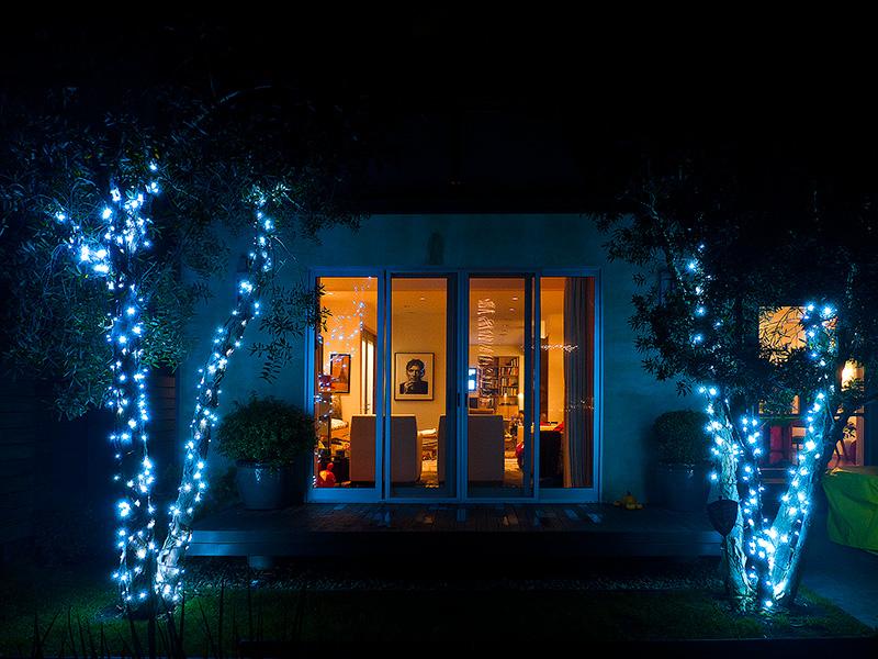 Рождество в Калифорнии: снег, пальмы и тихоокеанский бриз 081