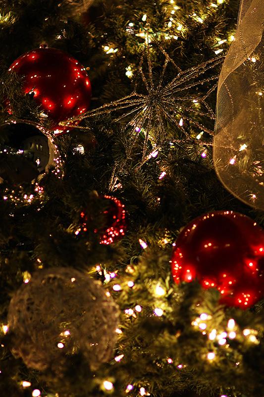 Рождество в Калифорнии: снег, пальмы и тихоокеанский бриз 102
