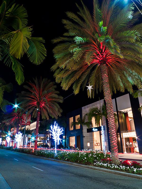 Рождество в Калифорнии: снег, пальмы и тихоокеанский бриз 103