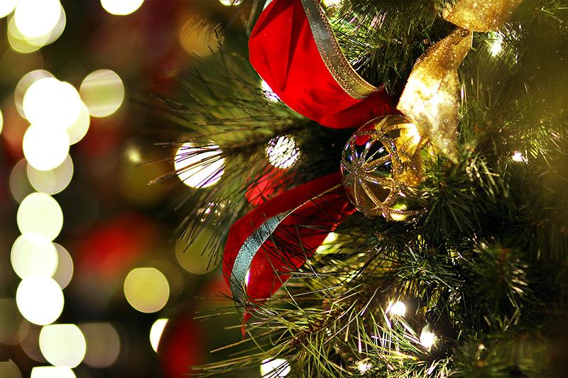 Рождество в Калифорнии: снег, пальмы и тихоокеанский бриз 106