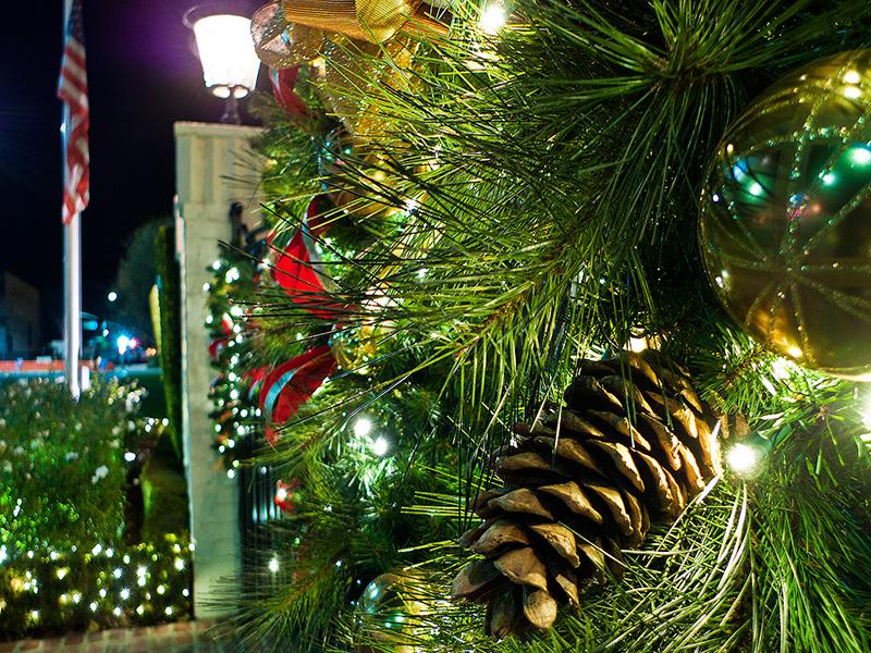 Рождество в Калифорнии: снег, пальмы и тихоокеанский бриз 110