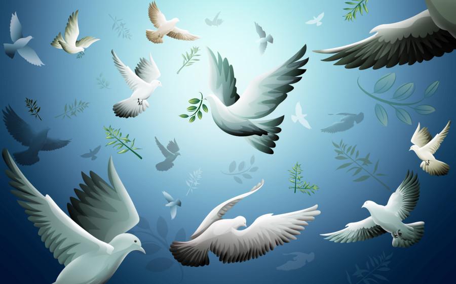 Flock_of_Birds_Widescreen