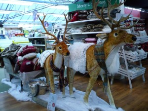 ww14deersleigh
