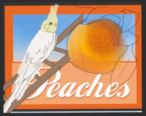 Peaches in progress digital drawing