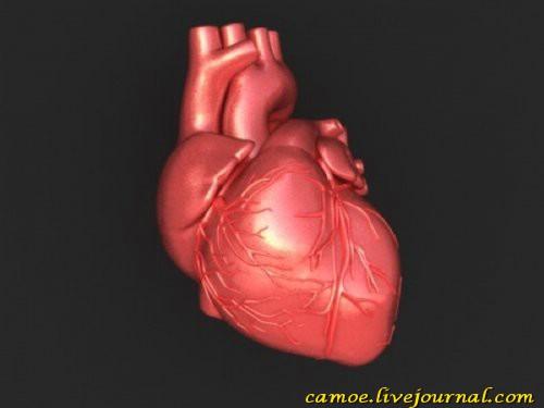 1360668073_serdce-valentina