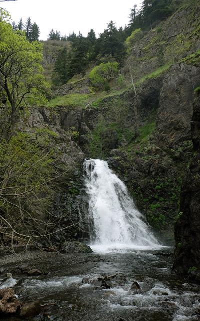 Dog Creek Falls near Carson, WA. Apr 2017.