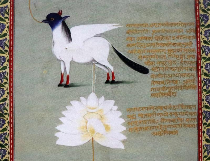 12. Камадхену (корова желаний). Фрагмент свитка с изображением чакр. Раджастан, Индия, нач. 19 в. Национальный музей Индии.