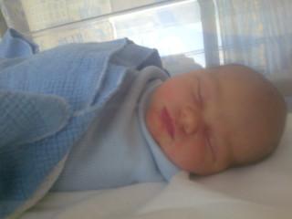 Harvey asleep in his hospital crib.  Swaddled tight!