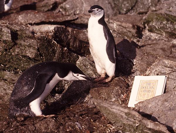 Penguin-Doulton-Story-book1