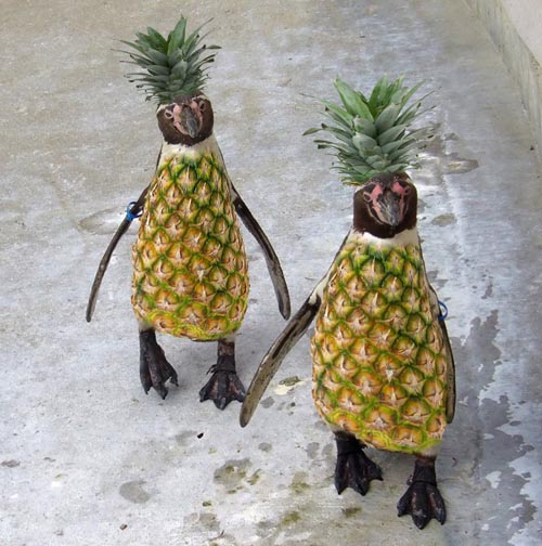 funny-pineapple-penguins