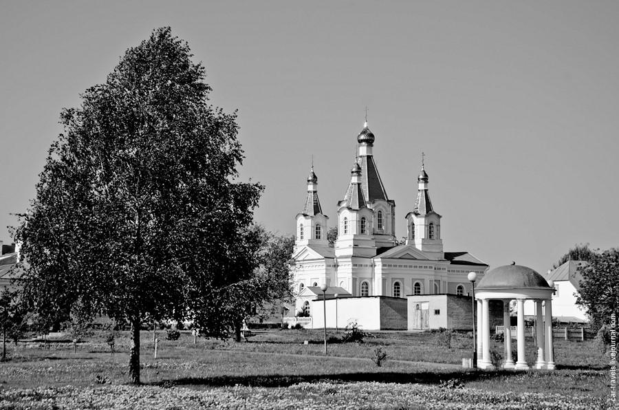 kobrin_43.jpg