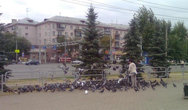 Столовая для голубей - Челябинск, Вокзал